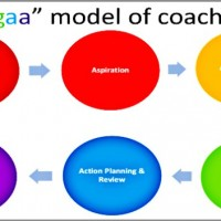 Harish-Devarajan-coaching-model-600x352