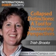 trish-brooks-collapsed-distinction-198x198