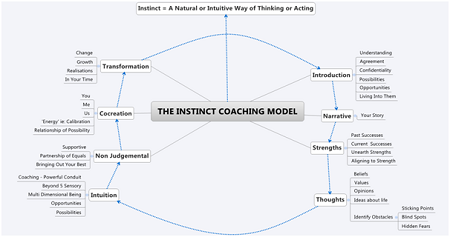 instinct-coaching-model-craig-hedge