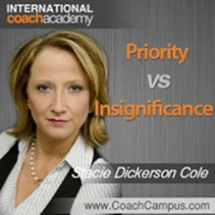 Stacie Dickerson Cole Power Tool Priority vs Insignificance