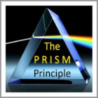 donna_willis_coaching model The P R I S M Principle