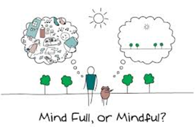 Image result for mindfulness coach