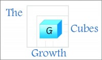 Coaching Model: The Growth Cube
