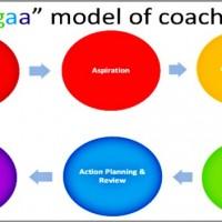 Harish-Devarajan-coaching-model-600x352