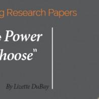 Research paper_post_Lizette DuBay_600x250 v2