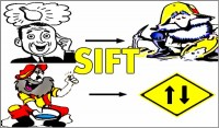 Coaching Model: SIFT