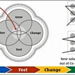 Coaching Model: Success Factors: See Feel Change Grow