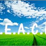 Coaching Model: PEACE