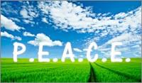 Executive Coaching Model Sonali_Banerjee_Dutta-600x352