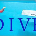 Coaching Model: DIVE