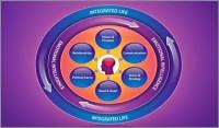 executive-coaching-model-teresa-shaffer-600x352