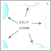brett_avelin_coachingmodel 5 Phase S.E.L.F. Aware