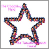 nickimcclusky-coaching-model The Coaching Field -The Transformational Forest