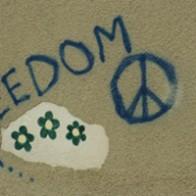 freedom-200x200