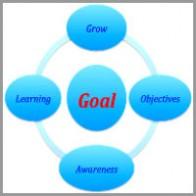 yasmine-shahin-coaching-model The Goal Model