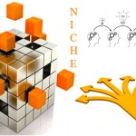 What Is A Coaching Niche?