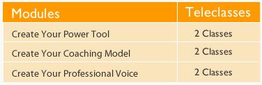 icoachportfolio modules