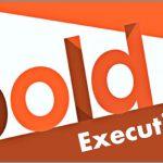 Coaching Model: BOLD Executive