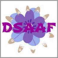 Monica_Chiang_coaching model DSAAF