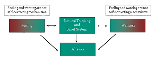 Rationalization thesis