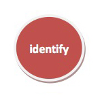 coachingmodel-identity