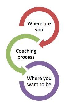 darlene-schindel-the-mirror-coaching-model-2