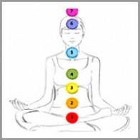 nisha-sharma-coaching model The Chakra