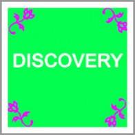 pamela-speder-discovery-coaching-model