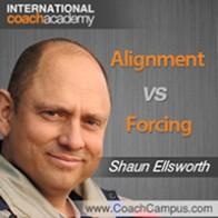Shaun Ellsworth Power Tool Alignment vs Forcing
