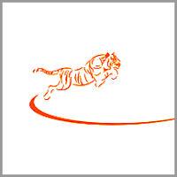 Coaching Model: Tiger