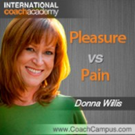 Donna Willis Power Tool Pleasure vs Pain