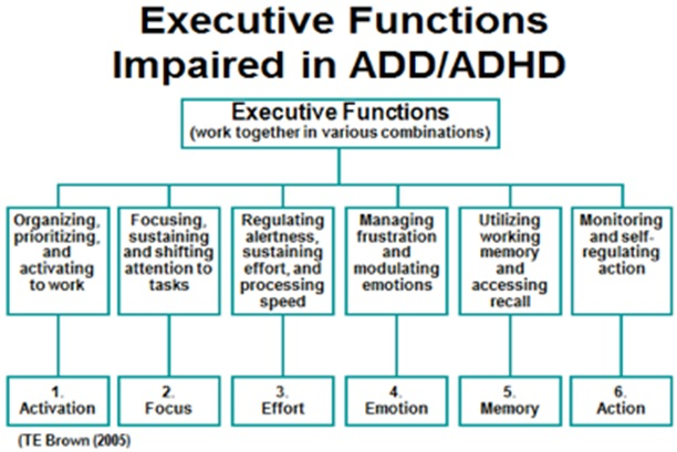 Hawthorn as an Anti inflammatory for ADHD managment Welcome to ePsyclinic ADHD Outline   Michelle Gillman Intro to Human Communication September   th       Informative Speech General Purpose To Inform the audience about the
