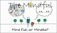 mindful-coach-consulting-coaching-model-irene-adams-600x352