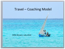 Executive coaching model hillik nissani