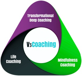 Transformational coaching model Chris Accornero