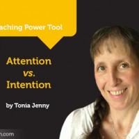 power-tool -tonia jenny- 470x352