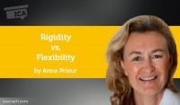 Power Tool: Rigidity vs. Flexibility