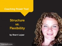 Power Tool: Structure vs. Flexibility