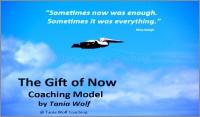 Life Coaching Model Tania Wolf -600x352