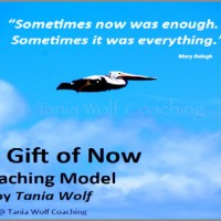 Life Coaching Model Tania Wolf -600x352