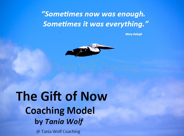 Life Coaching Model Tania Wolf 7