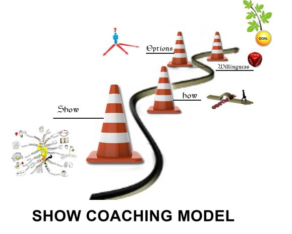 Executive Coaching Model Amjad Ali 1