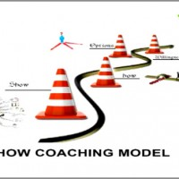 Executive-Coaching-Model-Amjad-Ali-600x352