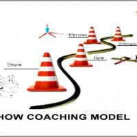 Executive-Coaching-Model-Amjad-Ali-600x352