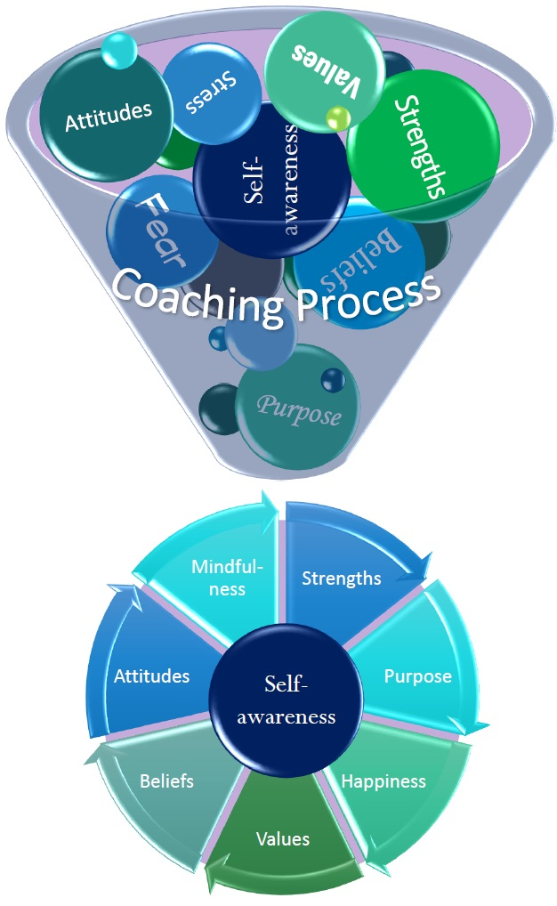 Kimberly Swanson Coaching Model 1