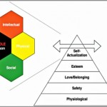 Coaching Model: The WHOLE