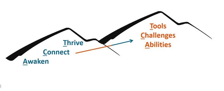 executive-coaching-model-stephen-miller-1