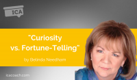 Power Tool: Curiosity vs. Fortune-Telling