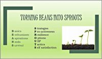 Coaching Model: Turning Beans into Sprouts