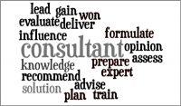 Coaching Model: Consultative Coaching